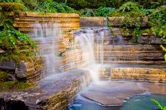 Botanischer Garten-Wasserfall Stockbild
