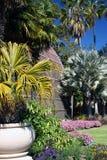 Botanischer Haus-Boden Stockfoto