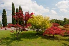 Botanischer Park Lizenzfreies Stockbild