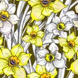 Botanisches nahtloses Muster mit Blumen von Narzissen, Narzisse lizenzfreies stockbild