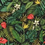 Botanisches nahtloses Muster mit Laub von exotischen Dschungelanlagen auf schwarzem Hintergrund Hintergrund mit Blättern von trop stock abbildung