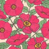 Botanisches nahtloses Muster mit rosa Heckenrosen, grünen Stämmen und Blättern Schöner Garten blüht die Hand, die in Weinlese gez Stockbild