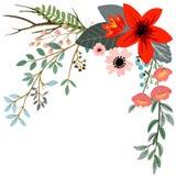 Botanisk blom- bukett Royaltyfria Foton