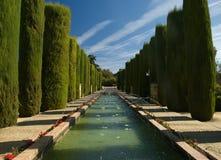botanisk cordoba trädgård Fotografering för Bildbyråer