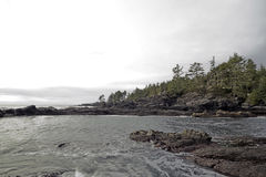 Botanisk strand i port Renfrew sätta på land tiden våta vancouver för sanden för pölar för aftonön den låga Stillahavs- Arkivbild