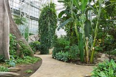 botanisk trädgård Fotografering för Bildbyråer