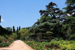 Botanisk trädgård Arkivbilder