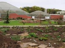 Botanisk trädgård Arkivbild