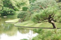 Botanisk trädgård 8 Arkivfoto