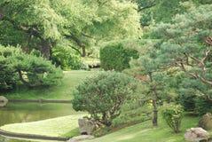 Botanisk trädgård 9 Arkivfoto