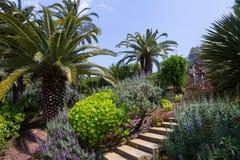 Botanisk trädgård av Barcelona i våren, Spanien arkivfoton
