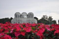 Botanisk trädgård av Curitiba i Brasilien Royaltyfri Fotografi