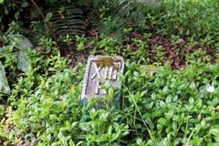 Botanisk trädgård Bali royaltyfria foton