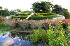 Botanisk trädgård Dominikanska republiken Arkivbild