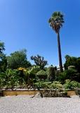Botanisk trädgård Florence, Firenze, Italien, Italia Arkivfoton