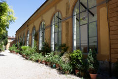 Botanisk trädgård Florence, Firenze, Italien, Italia Arkivfoto