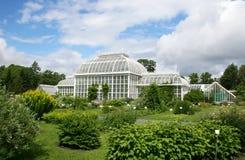 botanisk trädgård helsinki arkivfoto