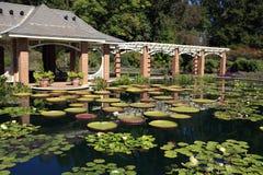 botanisk trädgård huntsville royaltyfria bilder