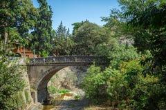 Botanisk trädgård i Tbilisi, Georgia Arkivbild