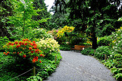 Botanisk trädgård lägre Silesia Royaltyfria Bilder