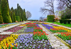 Botanisk trädgård med färgrika blommor Fotografering för Bildbyråer