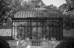 Botanisk trädgård på en solig dag i svartvitt Arkivbilder
