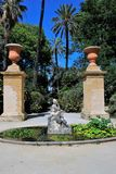 Botanisk trädgård Palermo, Sicilien Arkivbild