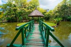 Botanisk trädgård Pamplemousses, Mauritius fotografering för bildbyråer