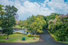 Botanisk trädgård Pamplemousses, Mauritius royaltyfri bild