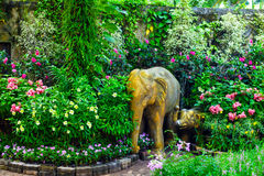 Botanisk trädgård Pattaya Royaltyfria Foton