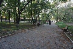 botanisk trädgård vladivostok Primorye Ryssland Royaltyfri Fotografi