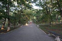 botanisk trädgård vladivostok Primorye Ryssland Arkivfoto