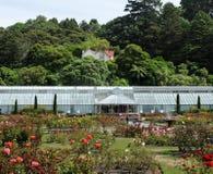 botanisk trädgård wellington Fotografering för Bildbyråer