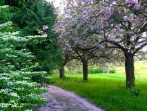 botanisk trädgårdbana Fotografering för Bildbyråer