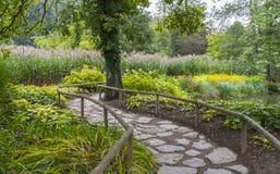Botanisk trädgårdVolcji potok Arkivbild