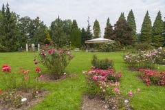 Botanisk trädgårdVolcji potok, Slovenien Arkivfoton