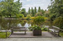 Botanisk trädgårdVolcji potok, Slovenien Arkivfoto