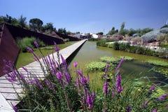 botanisk trädgård Arkivfoton