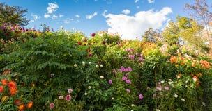 Botaniska trädgårdarna av den Trauttmansdorff slotten, Merano, Italien Arkivfoto