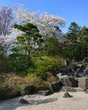Botaniska trädgården i Hamburg Royaltyfria Bilder