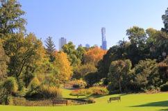 Botaniska trädgårdar Melbourne Australien Fotografering för Bildbyråer