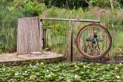 botaniskt hjul för springbrunnträdgårdpaulo sao Royaltyfri Bild