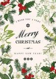Botaniskt kort för jul stock illustrationer