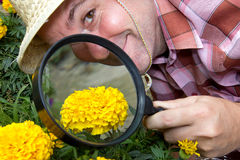 Botanist Stock Photography