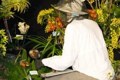 Botanist Royalty Free Stock Images