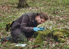 Free Botanist Studying Moss Samples Stock Image - 178054791