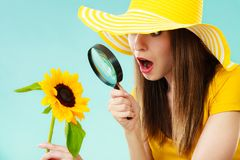 Botanist woman with sunflower and magnifying glass. Botanist woman surprised face expression in yellow hat examining flower looking through magnifying glass on Royalty Free Stock Images