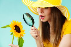 Botanist woman with sunflower and magnifying glass. Botanist woman surprised face expression in yellow hat examining flower looking through magnifying glass on Royalty Free Stock Photos
