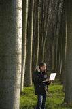 Botanist working outdoors. Botanist working with laptop inside a poplar wood Stock Photos