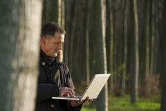 Botanist working outdoors. Botanist working with laptop inside a poplar wood Stock Photography
